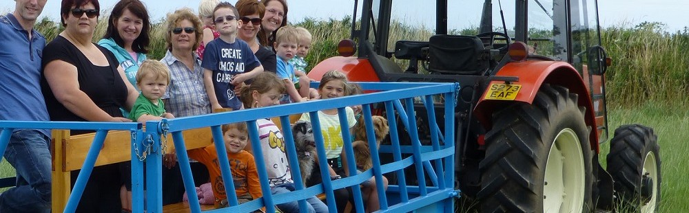 Cornhill Farm Cottages tractor and trailer ride