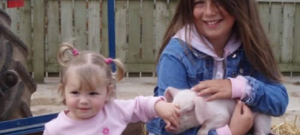 Cornhill Farm Cottages children meeting a pig