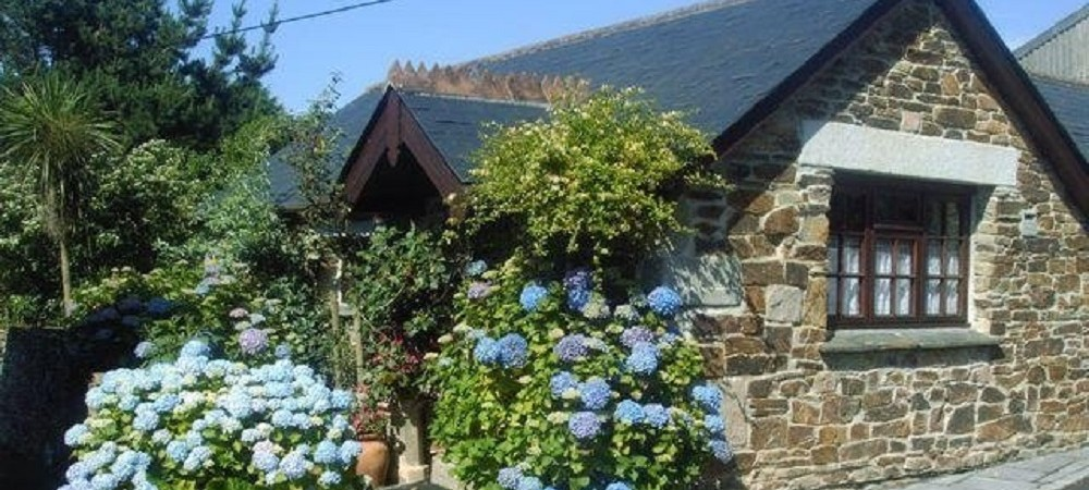 Hendra Paul Cottages Wild Flower Cottage Outside