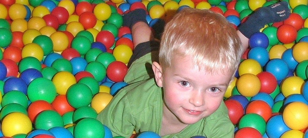 Knowle Farm child in ball pool