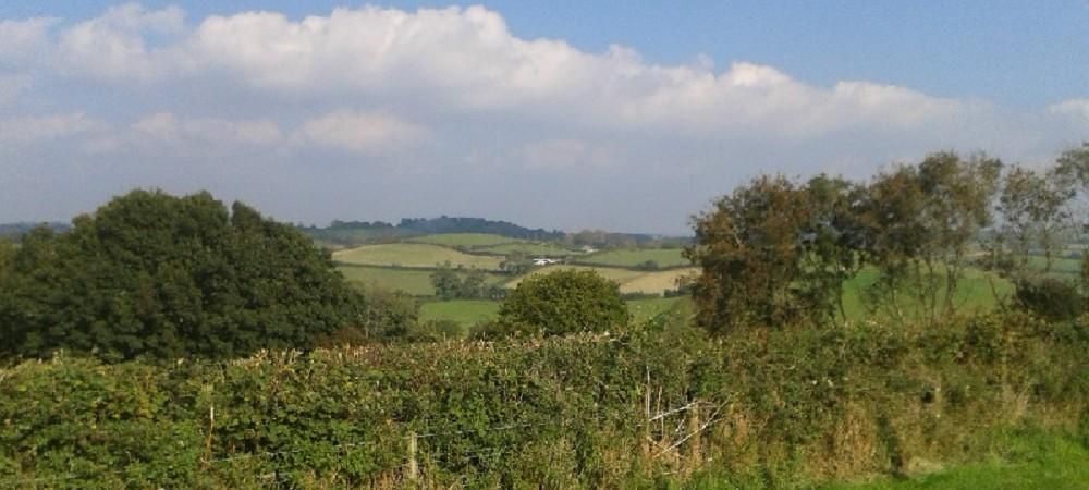 Lower Hearson Farm countryside