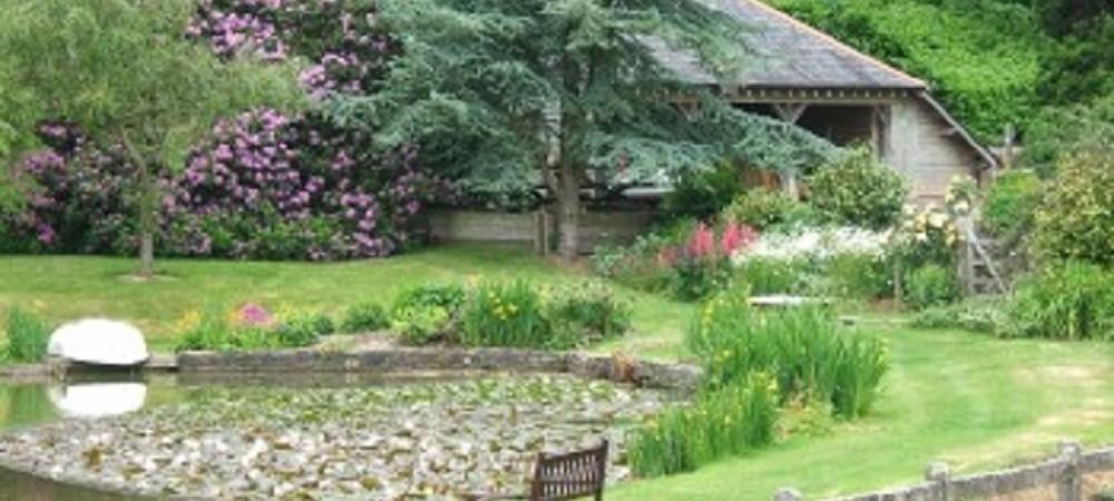 Malston Mill Farm flowers