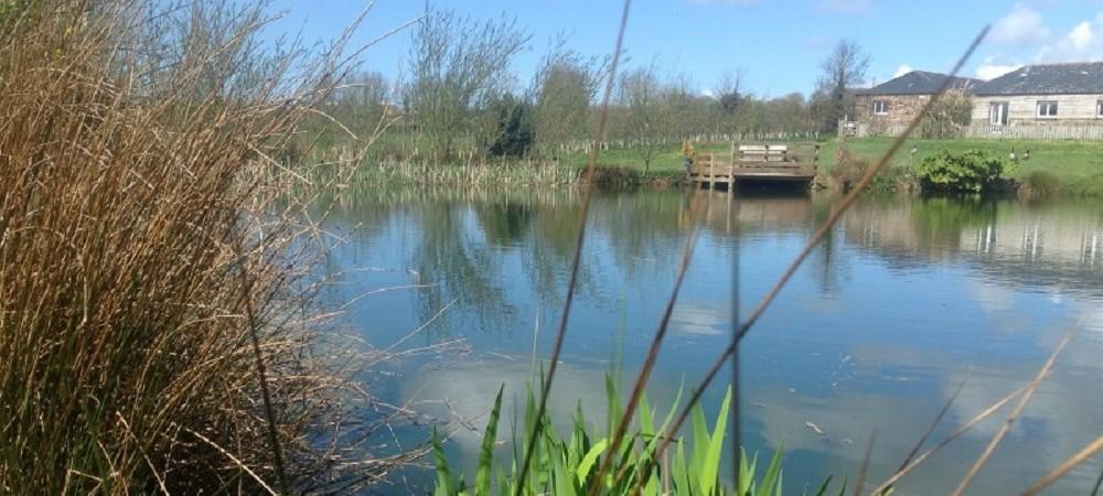 Pollaughan Farm lake