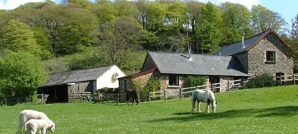 Riscombe Farm