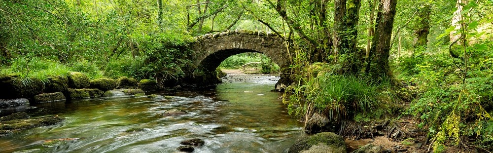 Ancient stone packhorse bridge crossing the river bovey in hisley woods Dartmoor Devon