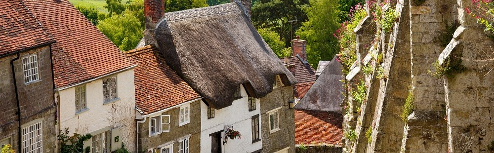 Country cottages on cobbledstreet at Gold Hill Shaftesbury Dorset