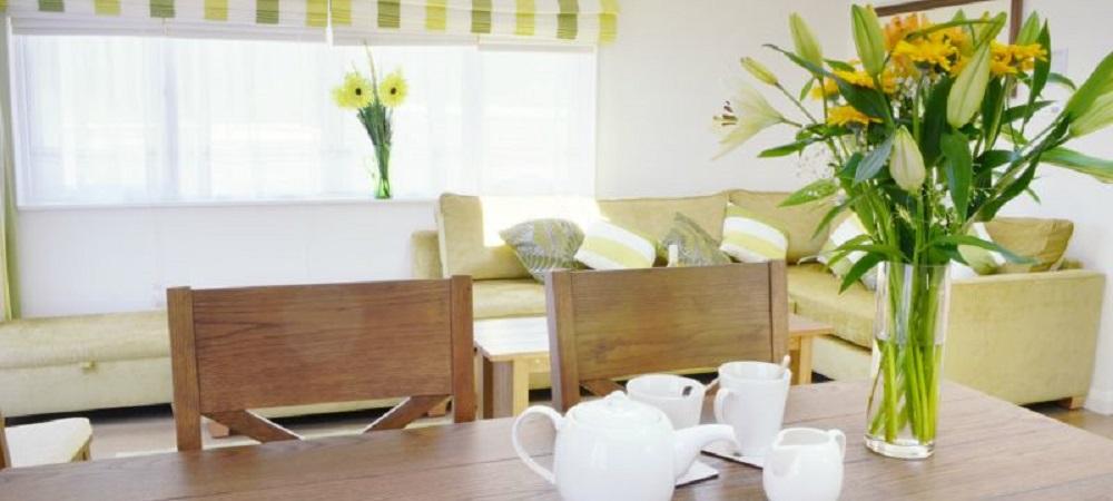 Bovisand Lodge Holiday Park Devon - Lodges Bovis and Bracken tea