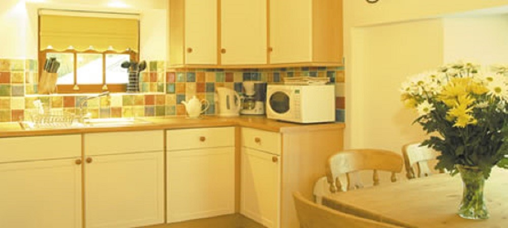 Bovisand Lodge Holiday Park Devon - Rennie apartment kitchen