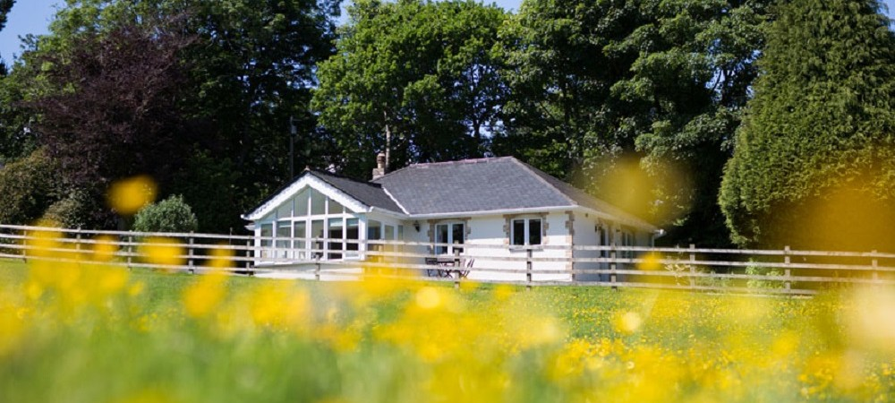 Bosinver Farm Holidays - Buddleia cottage