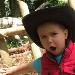 Dino Trek at Woodlands Family Theme Park
