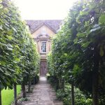 The Courts Garden Wiltshire