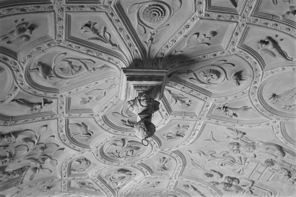 Library ceiling at Lanhydrock, Cornwall
